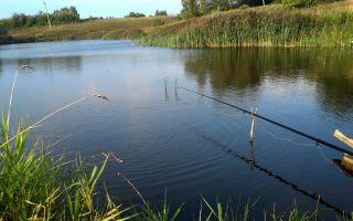 Ловля леща на поплавочную удочку – выбор удилища, оснастки, прикормки и наживки