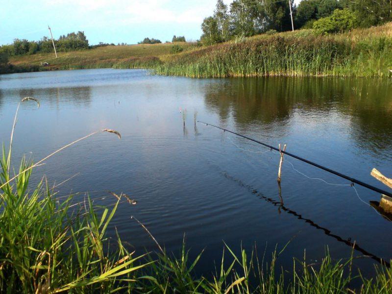 Ловля леща удочкой на мелководье