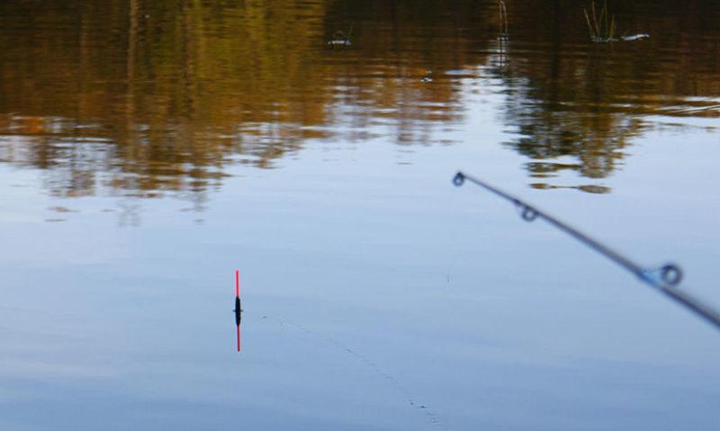 Ловля поплавочной удочкой на стоячей воде