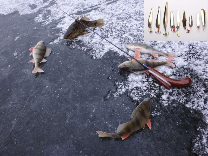Блесны для зимней рыбалки Как выбрать блесны для зимней рыбалки
