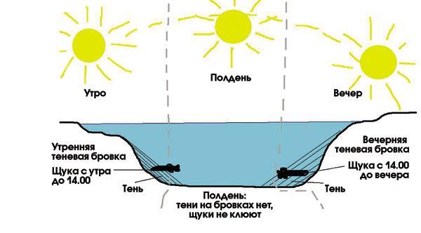 Поведение щуки под водой