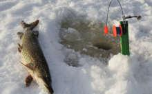 Как и на что ловить щуку в январе
