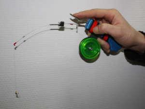 Описание рыбы ротан - базовые способы ловли и особенности рыбалки
