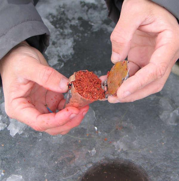 Прикормка зима окунь своими руками