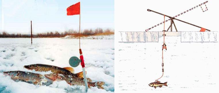 Как сделать жерлицы на рыбалку