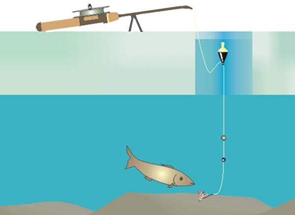 Схема устройства поплавочной удочки для зимней рыбалки