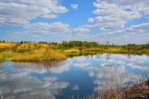 Плотва весной: ловля на поплавок и фидер