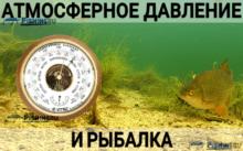 Влияние атмосферного давления на ловлю рыбы