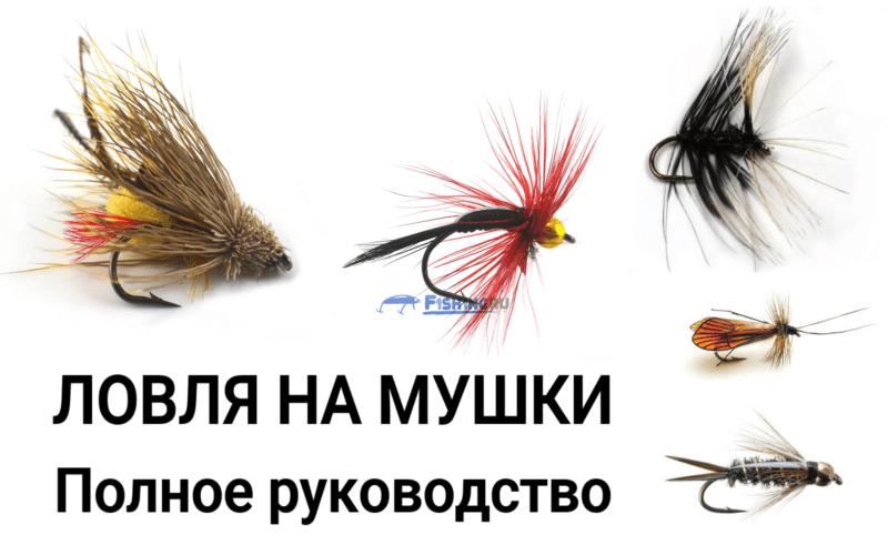 Ловля на мушки - полное руководство от f1sh1ng.ru