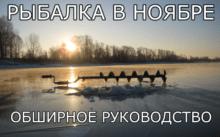 Рыбалка в ноябре - как, кого, где и на что ловить [vgodu]
