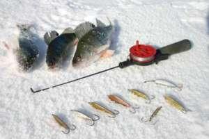 Окунь пойманный зимой на блесну в Карелии