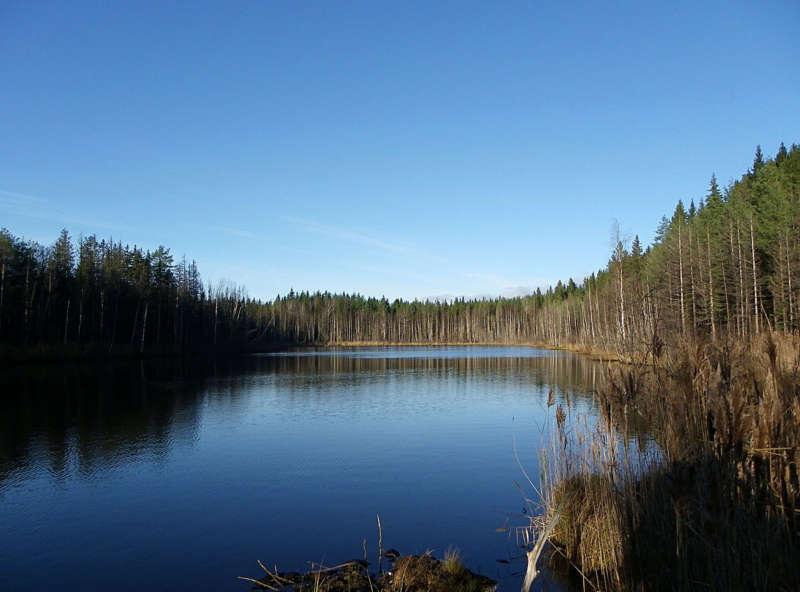 Рыбалка в Карелии карта, озеро Ламба