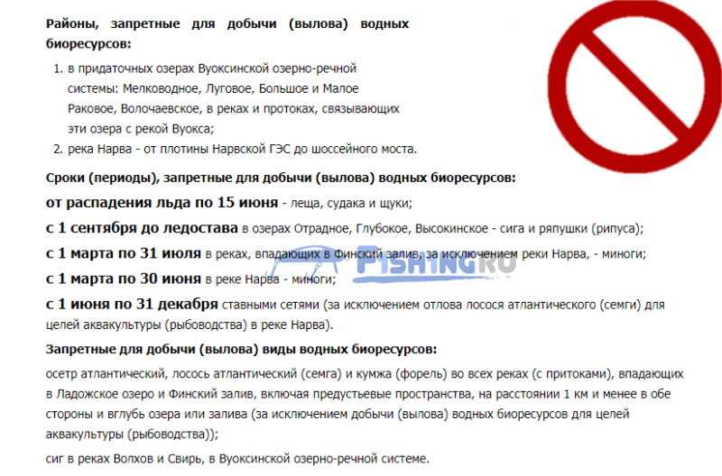 Запрет на ловлю рыбы в Ленобласти (СПБ)