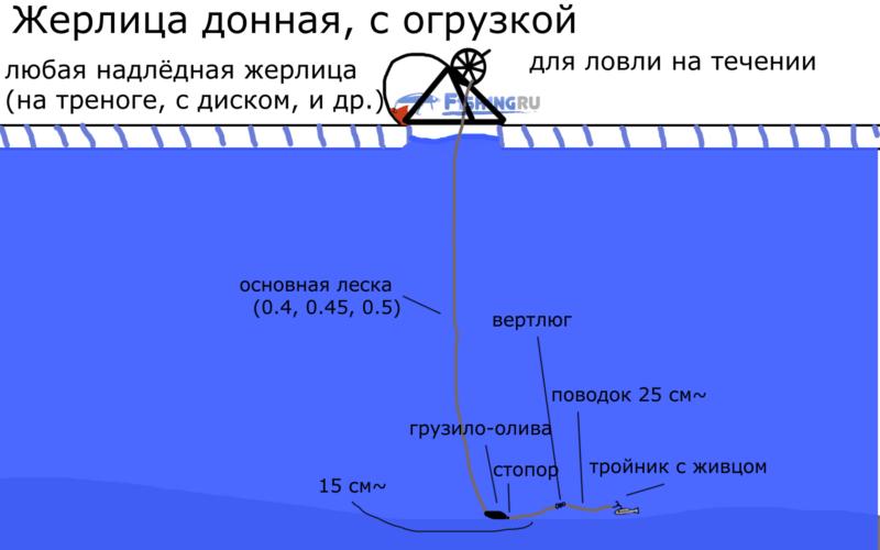 Зимняя донная жерлица f1sh1ng.ru