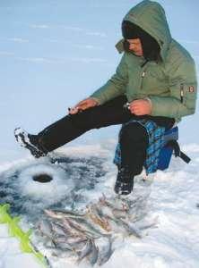 Ловля сига зимой; когда ловить сиг