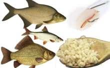 Перловка для ловли рыбы