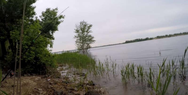 Берег Волги - рыбалка