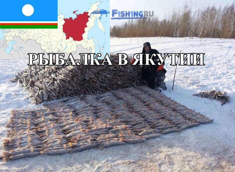 Рыбалка в Якутии (Республика Саха) от f1sh1ng.ru