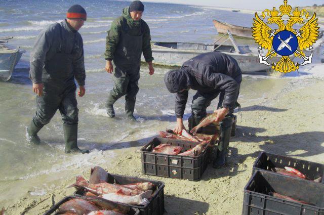 Федеральный закон о рыболовстве