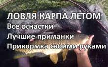 Рыбалка на карпа летом - лучшие снасти, приманки и способы ловли