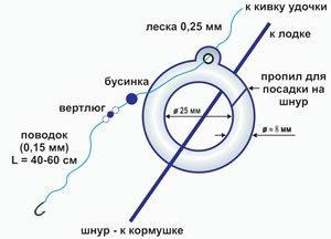 Кольцо на леща