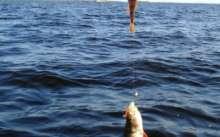 Рыболовная база на Рыбинке (Рыбинское водохранилище), отчеты