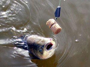 Купить технопланктон для рыбалки в интернет-магазине в Москве недорого
