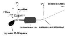 Снасть донная для ловли толстолобика на технопланктон