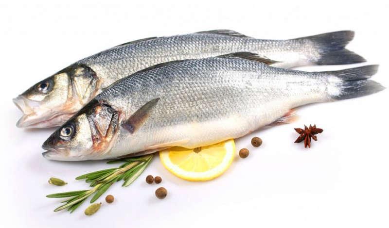 Рыба сибас - фото, рецепты приготовления, описание, цена за кг