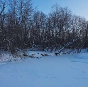 Где искать хариуса зимой на реках?