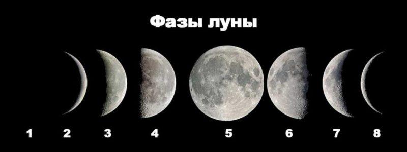 Прогноз рыбалки по луне