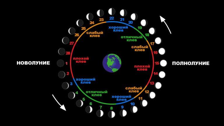 Прогноз рыбалки по лунному календарю