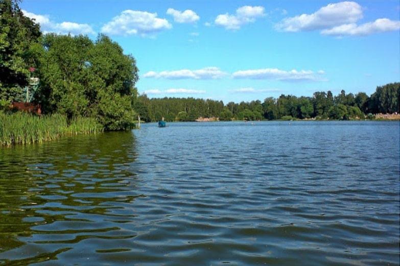 Прогноз клева в Подмосковье Малаховское озеро