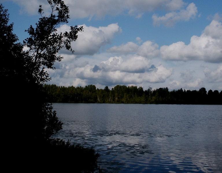 Озеро Светлояр отчет о рыбалке