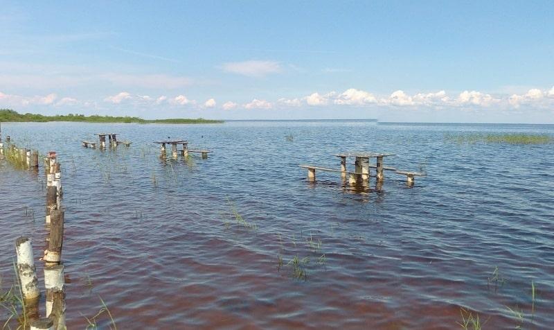 Прогноз клева рыбы Кубенское озеро