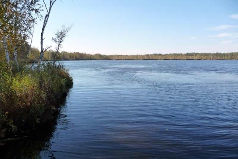 Прогноз клева в Нижегородской области, Нижнем Новгороде на завтра и неделю Боровское озеро