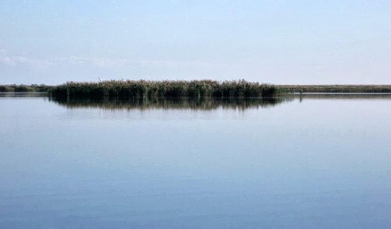 Прогноз клева в Краснодарском крае на неделю и календарь клева 2021