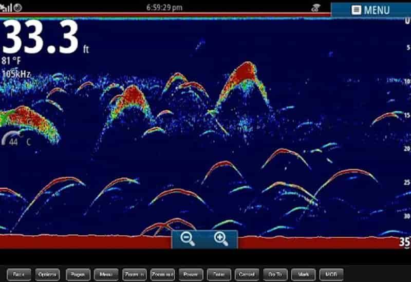 косяк рыбы на экране эхолота
