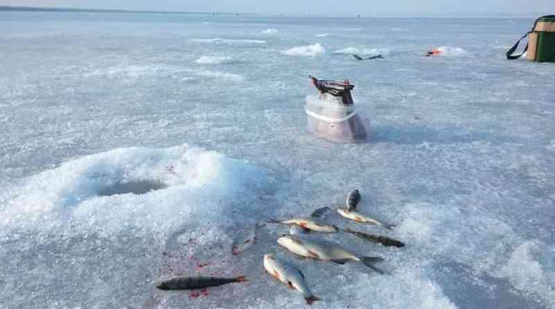эхолот через лед работает или нет