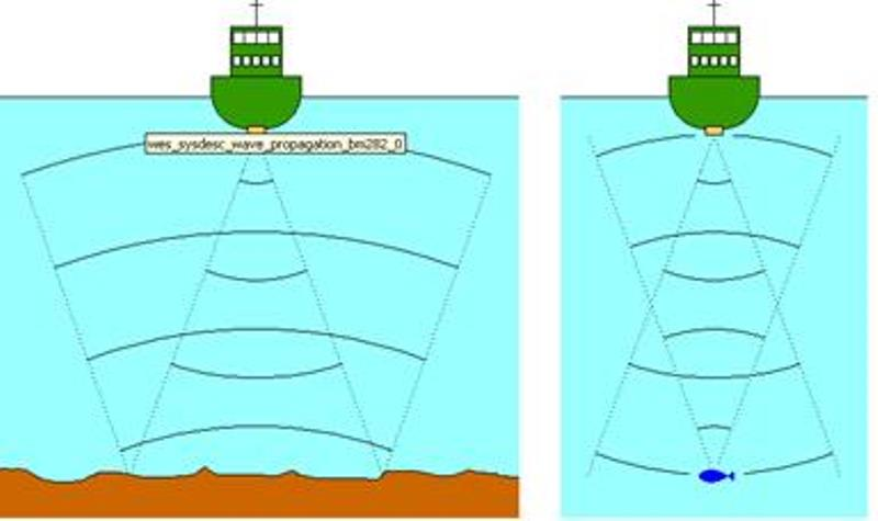 Как проверить эхолот без воды