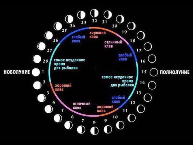 Лунный календарь клева по дням