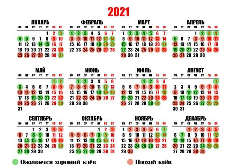 Календарь клева рыбы по дням