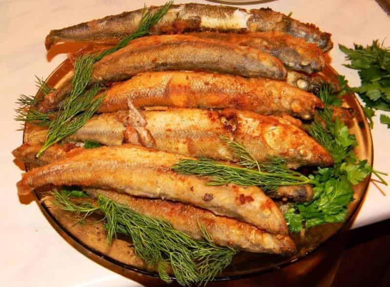 Что за рыба ряпушка– фото, рецепты, где водится, рыбалка